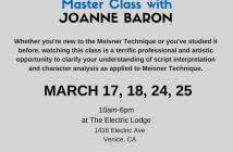 Joanne Baron Masterclass banner